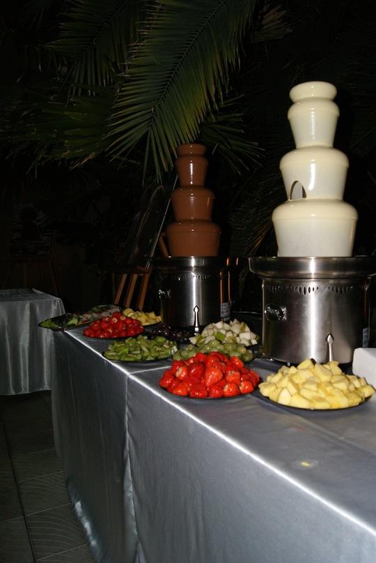 Шоколадный фонтан СПБ